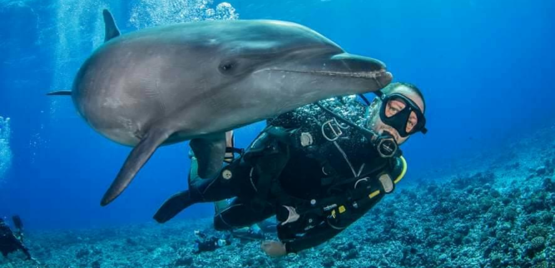 https://tahititourisme.cn/wp-content/uploads/2017/08/Archimedeexpeditionsphotocouverturure_1140x550px.png