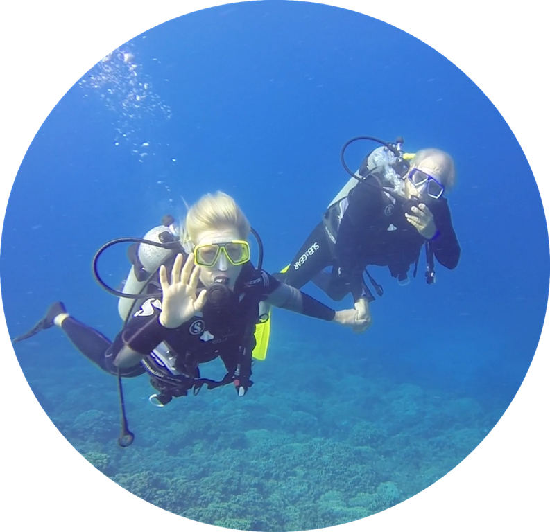 https://tahititourisme.cn/wp-content/uploads/2017/08/Divers-in-the-first-try.png