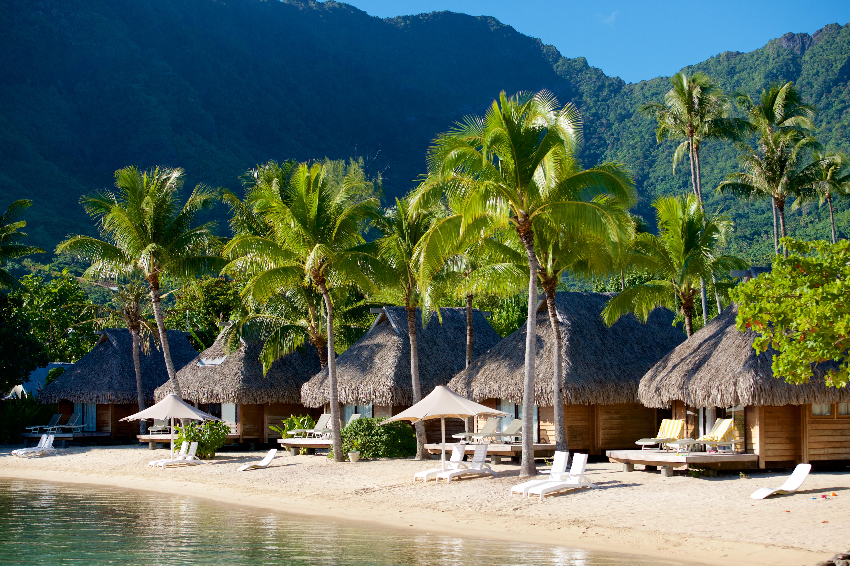 https://tahititourisme.cn/wp-content/uploads/2017/08/HEBERGEMENT-Manava-Beach-Resort-and-Spa-Moorea-2-Tim_McKenna.jpg