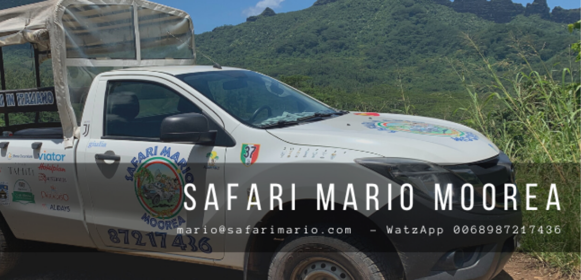 https://tahititourisme.cn/wp-content/uploads/2017/08/Safari-Mario-Moorea.png