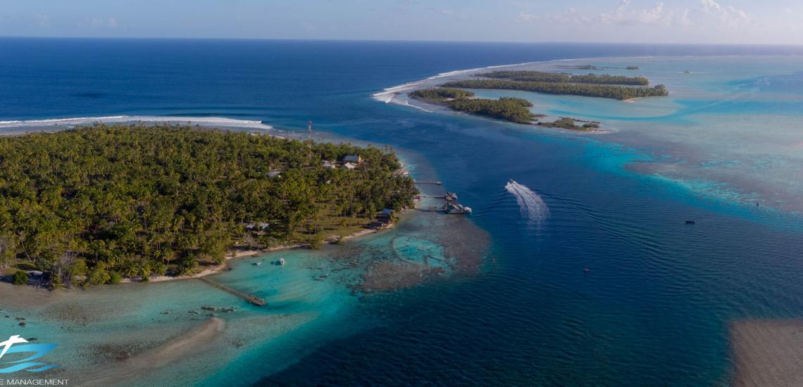 https://tahititourisme.cn/wp-content/uploads/2017/08/Tahiti-Dive-Management.png