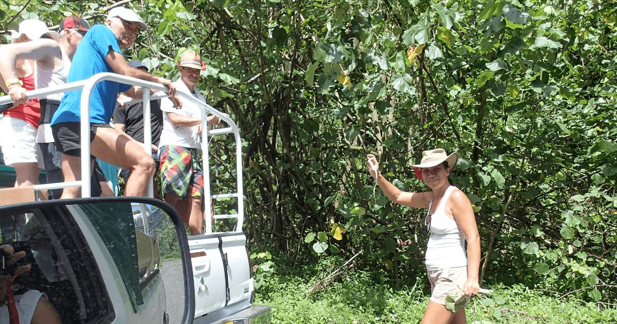 https://tahititourisme.cn/wp-content/uploads/2017/08/Tahiti-Safari-Expeditions_1140x500-min.png