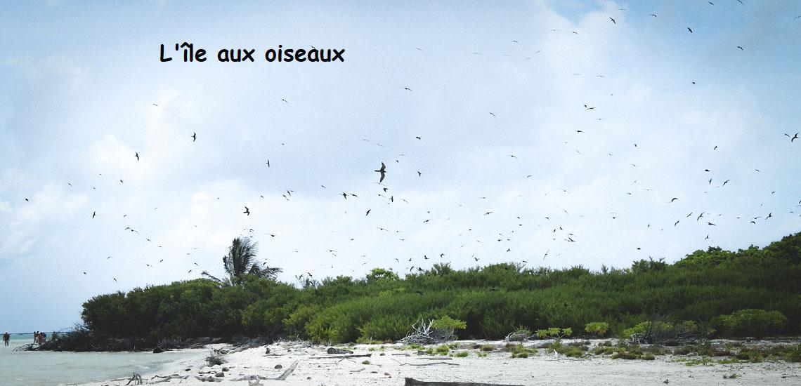 https://tahititourisme.cn/wp-content/uploads/2017/08/Tahiti-Voile-et-Lagon-photo-de-couv-2.jpg