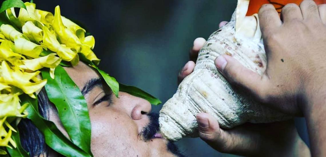 https://tahititourisme.cn/wp-content/uploads/2017/08/Unique-Tahiti.png