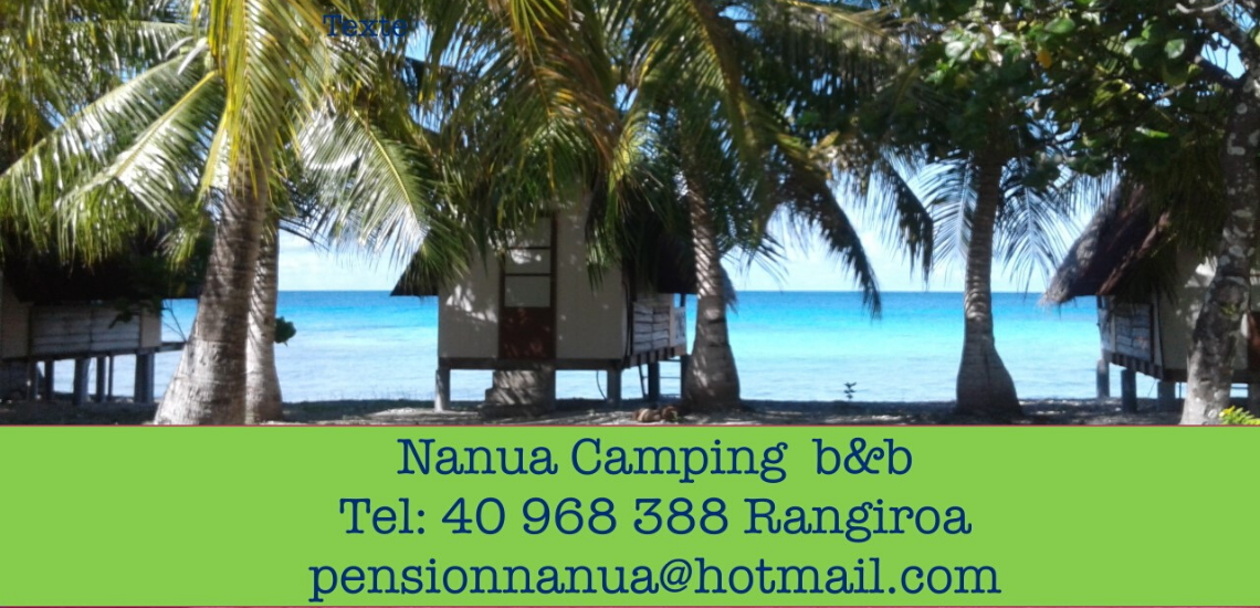 https://tahititourisme.cn/wp-content/uploads/2017/08/nanuacamping_1140x550.png