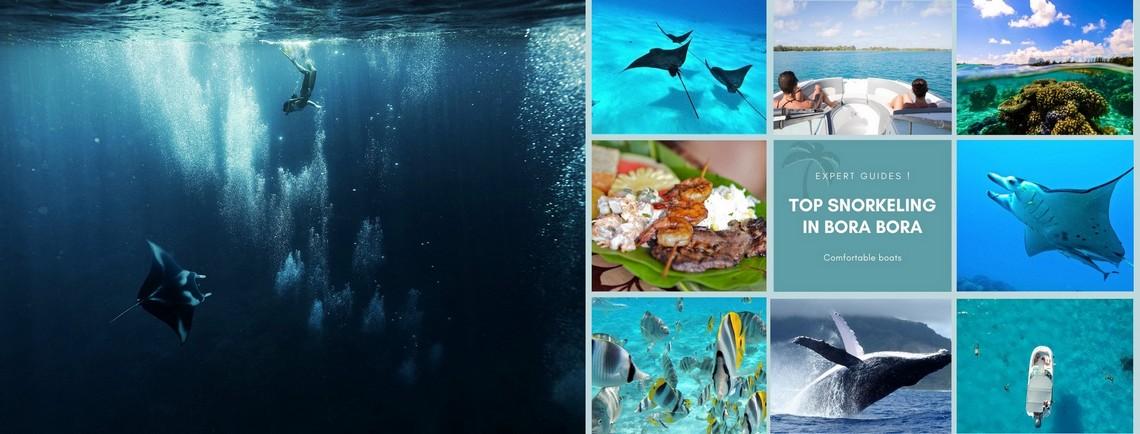 https://tahititourisme.cn/wp-content/uploads/2017/08/reef-discovery-bora-bora.jpg