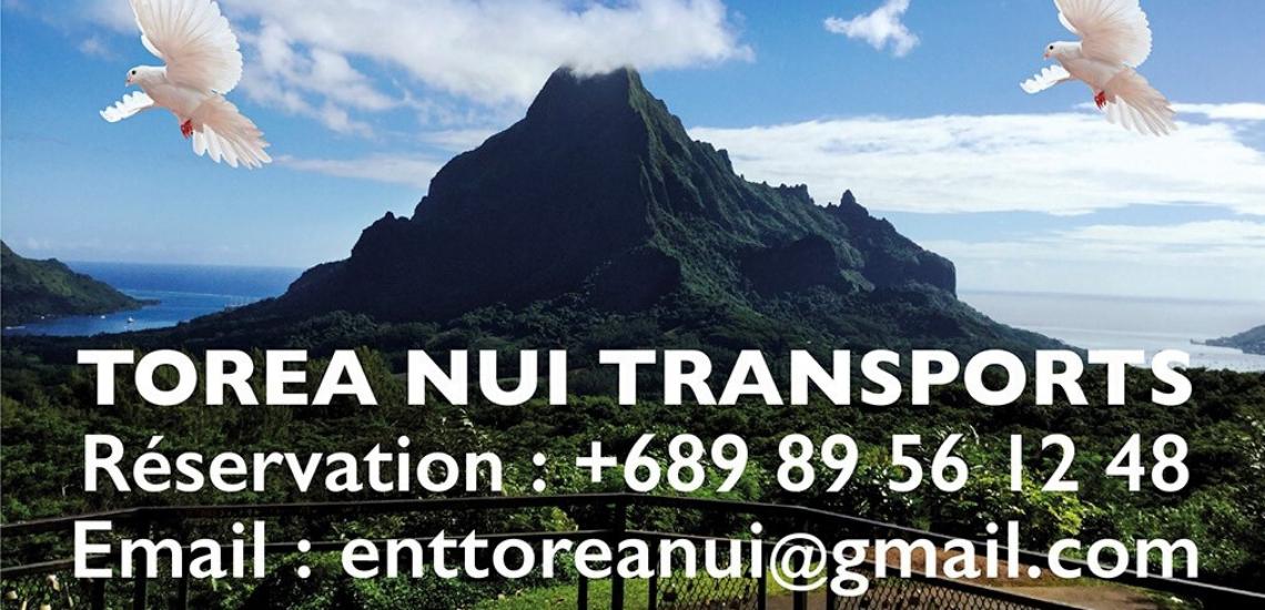https://tahititourisme.cn/wp-content/uploads/2017/08/torea-nui-transports_1140x550.png