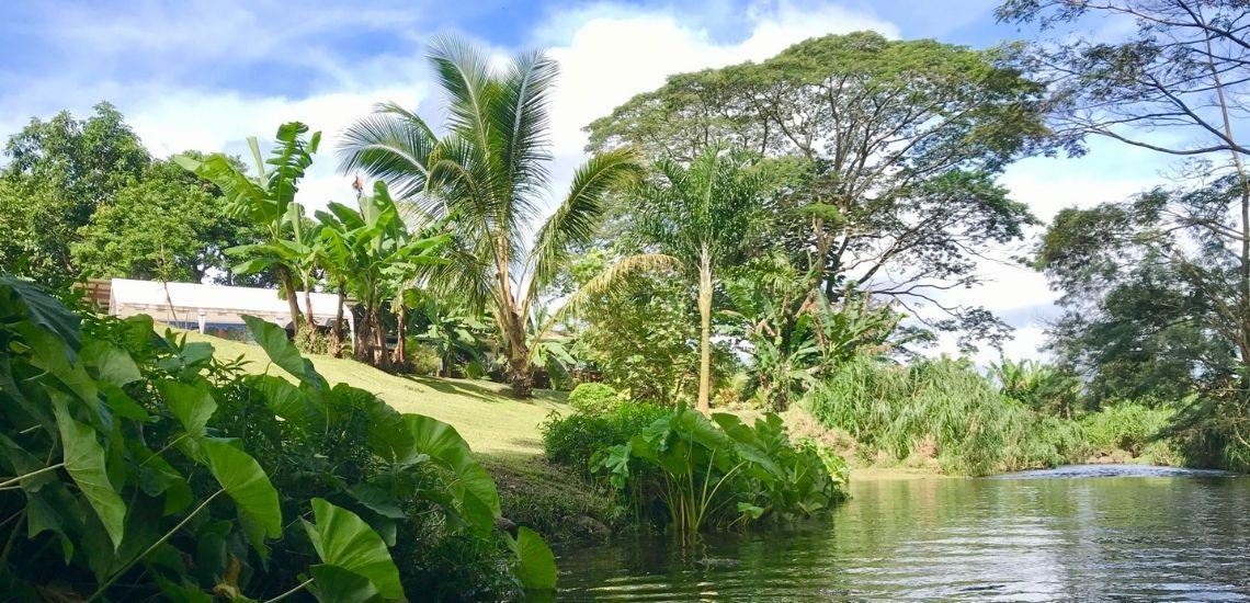 https://tahititourisme.cn/wp-content/uploads/2020/03/Teanavai_Camping_1140x5550px.jpg