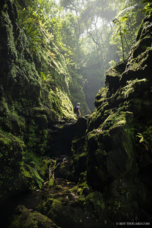https://tahititourisme.cn/wp-content/uploads/2021/04/benthouard_tepari_hike_0242.jpg